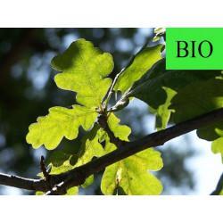 Chêne feuille en vrac - sachet de 100gr pour tisane