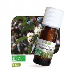 Eucalyptus , huile essentielle bio, flacon de 10 ml