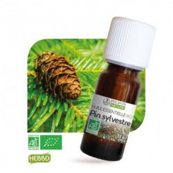 Pin sylvestre, huile essentielle bio, flacon de 10 ml