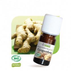 Gingembre, huile essentielle BIO, flacon de 5 ml